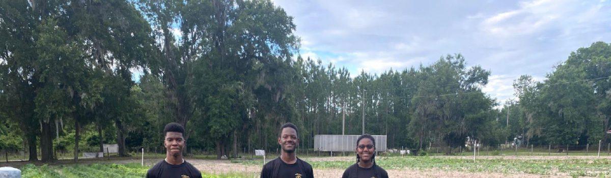 Dexter, Clayton, Ashleigh ~   Florida