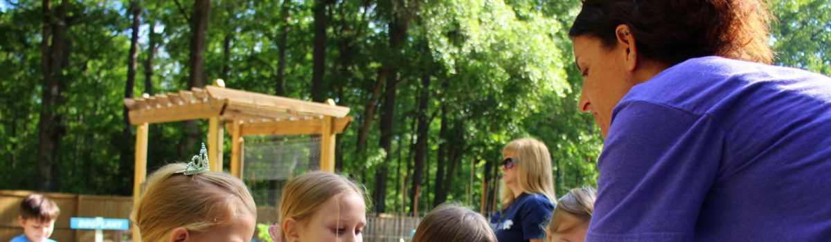 Katie's Krops Bringing Educational Programming to the Lowcountry with New Outdoor Classroom
